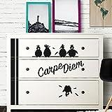 Wandaro W3346 Wandtattoo Carpe Diem + Vögel Passend für Ikea HEMNES Kommode weiß