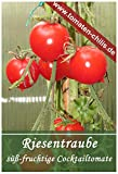 Riesentraube - Cocktailtomate