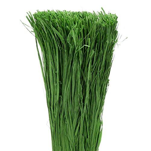 La Cordeline Floche 400g Raphia Couleur Vert Fonce Longueur Fibre ±1M10 S/Sachet Gaine, Raphia, Vert foncé, 8, 5 x 65 cm, RVF400