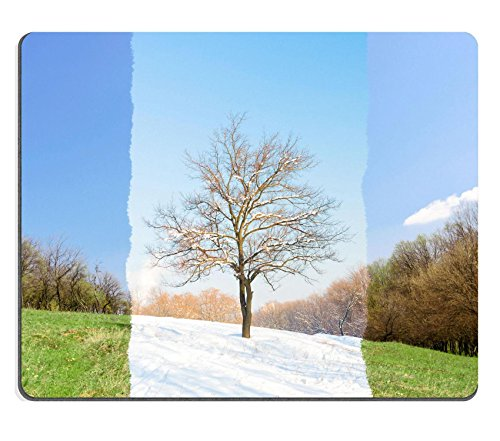 luxlady-gaming-mouse-id-39709478-oncept-tree-in-two-seasons-winter-spring-2-in-1