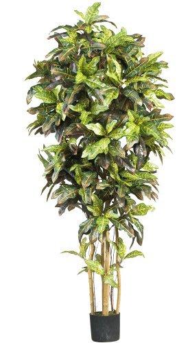 Nearly Natural 5211 Croton Silk Tree, 6-Feet, Green by Nearly Natural