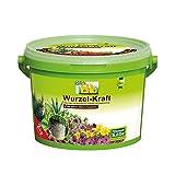 Bio Wurzel-Kraft 2kg im Eimer, Wurzel-Dünger in Bio-Qualität, Düngemittel für Wurzeln, biologisch, Kölle's Bio Wurzelkraft
