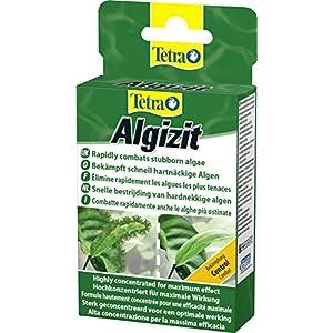 [Gesponsert]Tetra Algizit (vordosiertes Algenmittel mit schneller Biozid- Wirkung), 1er Pack (1 x 10 Tabletten)