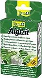 Tetra Algizit, beseitigt selbst hartnäckige Algenprobleme im Aquarium, vordosiertes Algenmittel mit schneller Biozid- Wirkung, 1 Packung (1 x 10 Tabl.)