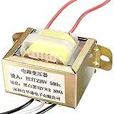 Bluelover 220V 50Hz Entrée 30W Dual 12V Output Power Transformer