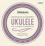 D'addario Ukulele Strings - Best Reviews Guide
