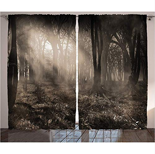 WKJHDFGB Gothic Vorhänge Dunkle Waldlandschaft Mit Sonnenstrahlen Und Nebel Vintage Farben Gothic Fantasy Art Wohnzimmer Schlafzimmer Dekor,215X200Cm -