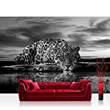 Vlies Fototapete 368x254cm PREMIUM PLUS Wand Foto Tapete Wand Bild Vliestapete - Tiere Tapete Leopard Wasser Himmel schwarz - weiß - no. 3560