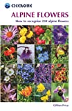 Image de Alpine Flowers