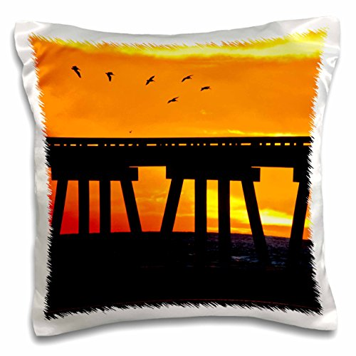 Danita Delimont - Larry Ditto - Birds - Brown Pelicans gliding over bridge at San Luis Pass, Galveston Island. - 16x16 inch Pillow Case (pc_191330_1)