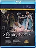 Tchaikovsky: Sleeping Beauty [Blu-ray] [2010] [Region Free]