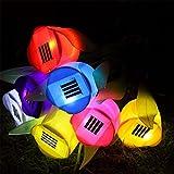 Énergie solaire LED jardin lampe extérieur Cour coloré tulipe Aménagement paysager gazon et graminées Lot de 5