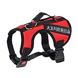 ZH Hundegeschirr, Harness, Medium, Large, Straps, Halsband, Explosionsgeschützt, Pet Supplies (Farbe : Red, größe : M)