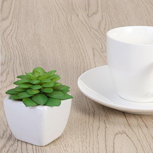 winomo Blumentopf aus weißer Keramik in Würfel Pflanzen Künstliche succulentes Mini Keramik für Haus (Alocasia)