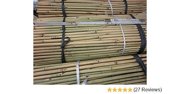 25 Stuck Bambusstabe Bambusrohre 152 Cm Lang 15 17 Mm Dick