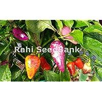 Portal Cool Multicolor jalapeño chile - brillante, adición colorida a su jardín Grown, Oz