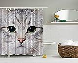 """Cortina de ducha de gato por Ormis decoración gris diseño de impresión de gato gatito Kitty closeup portrait imagen fotografía Digital Lovely mascota baño cortina de ducha de tela con Tamaño 72""""x 72"""""""