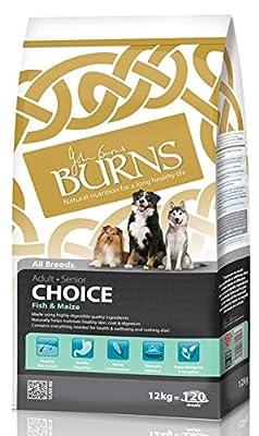 Burns Fish Choice
