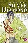 Silver Diamond Vol.17