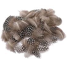 50x Plumas De Gallina Teñido Sortea Guineas para Decoración de Ropa Casa Fiesta 5-10 cm de Pollo Naturaleza