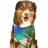 RAHJK Bandana para Perro, Pañuelos para Perro, Reversibles, Ajustables, Triangulares, Bufandas para Mascotas y Gatos Playa de la Isla de Fuerteventura