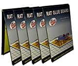#1: Rat glue trap SET of 5 - Mouse Insect Rodent Lizard Rat Catcher Adhesive Sticky Glue Pad Terminator Ultimate Trap for Rat Roda Box