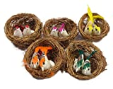 AsianHobbyCrafts Artificial Mini Birds w...