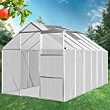 Jago Walk-in Green House 8.69 m³ Polycarbonate Garden Plants Growhouse 310/190/183 cm
