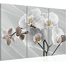 suchergebnis auf f r 3 teilige bilder orchidee. Black Bedroom Furniture Sets. Home Design Ideas