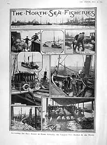 Équipage 1907 de Chalutier de Poissonnerie de Grimsby de Bateaux de Pêche Maritime