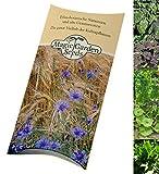 Gemüse für Green Smoothies Samen-Geschenkset mit 5 grünen Superfoods