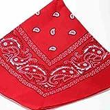 ShukanFashions - Bandana con motivo cachemire sui due lati, colore rosso