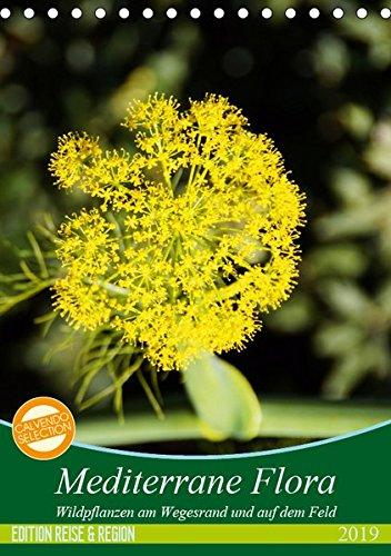 Mediterrane Flora (Tischkalender 2019 DIN A5 hoch): Die Flora des Mittelmeerraumes ist vielfältig und farbenfroh. (Monatskalender, 14 Seiten ) (CALVENDO Natur) (Mediterrane Wildblumen)