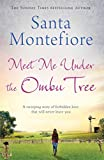 Image de Meet Me Under the Ombu Tree (English Edition)
