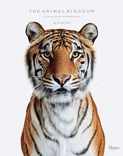 Animal Kingdom: A Collection of Portraits