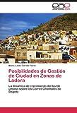 Posibilidades de Gestión de Ciudad en Zonas de Ladera