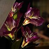 Deko LED Lilie weiß lila beleuchtet Batterie Blumentopf Kunstpflanze Blume 42cm Kunstpflanze Kunstblume mit Licht Lichter Tischlampe Tischleuchte - 3