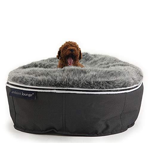 Ambient Lounge - Puf Perros Gatos asa Transporte Funda