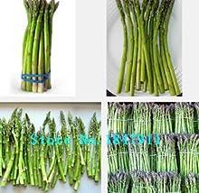 Nueva gran venta original paquete de 100 semillas / pack, semillas de espárragos, raras Semillas púrpura colinabo, semillas de hortalizas orgánicas
