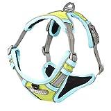 Warmcasa Hundegeschirr Verstellbar Brustgeschirre 3M Reflektierend Nylon Nachtsichtbarkeit Camping für Kleine Mittlere Große Hunde(S, Grün)