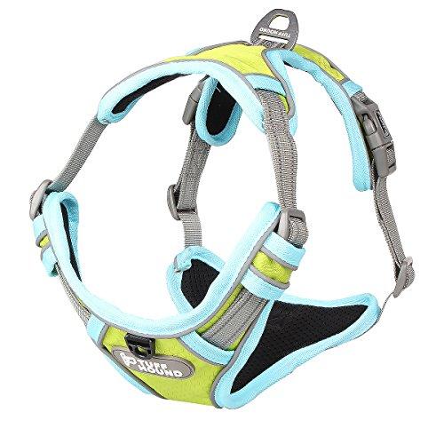 Warmcasa Hundegeschirr Verstellbar Brustgeschirre 3M Reflektierend Nylon Nachtsichtbarkeit Wandern für Kleine Mittlere Große Hunde(M, Grün)