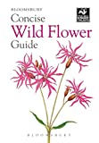 Concise Wild Flower Guide (Wildlife Trusts)