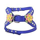 Homyl Einstellbarer Hundegeschirr Brustgeschirr Softgeschirr mit Blume Dekor für Hunde Outdoor Training (ohne Leine) - Dunkelblau M