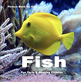 Picture Book for Kids: Fish: Fun Facts & Amazing Pictures (English ...
