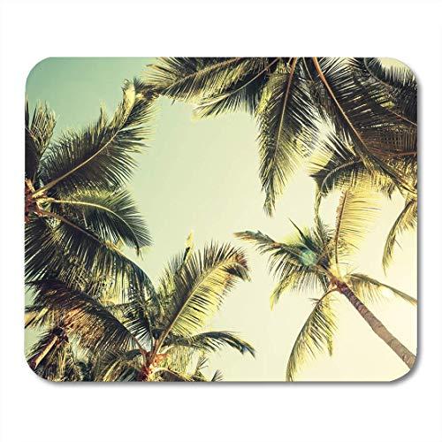 Mauspads Grüne Strand-Kokosnuss-Palmen über hellem Himmel-Weinlese-Mausunterlage für Notizbücher, Tischrechnermatten Bürozubehöre -