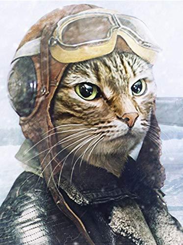 - Katze Im Hut Zubehör Kit