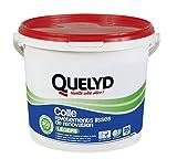 Quelyd Colle Revêtements lisses de renovation - Legers - Seau de 5kg