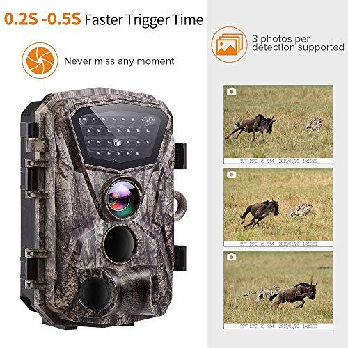 080P Video Wildlife Camera, Waterproof Trail Hunting Cam, PIR Motion Sensor, 24pcs IR LED Infrared Support Night Vision bis zu 65ft, 2.4