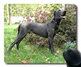 Gaming Mousepads, Glücklicher englischer Bulldogge-Welpenboo-Hund, Präzisionsnaht, haltbares Mauspad