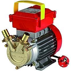 Rover Pompe CE 20 - Pompe électrique de transvasement deux voies - Idéale pour vin, eau, carburant